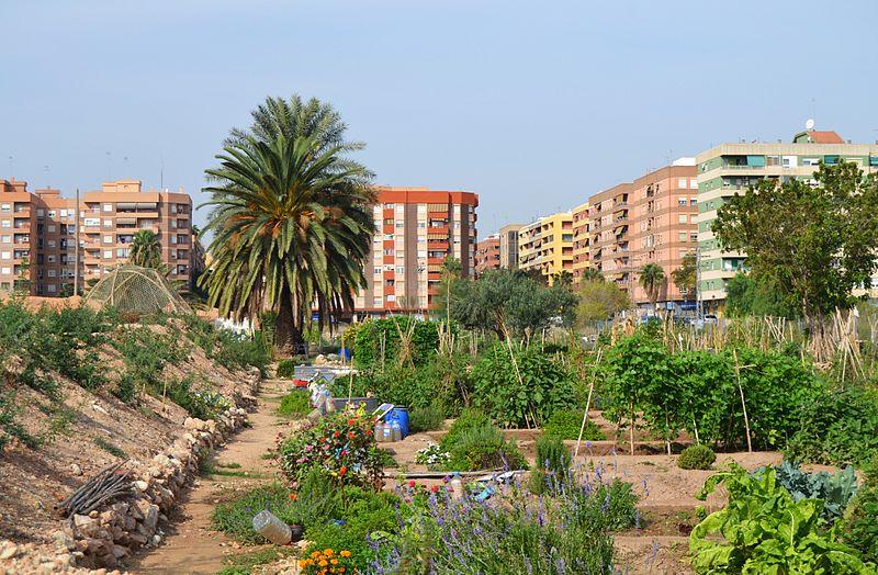 Horts urbans de Benimaclet (Fotografia: Joanbanjo. Wikipedia)