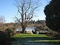 Hotel garden, Wilton - geograph.org.uk - 1691169.jpg