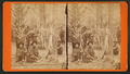 Hunters party, Florida, from Robert N. Dennis collection of stereoscopic views.png