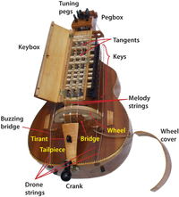 Major parts of a modern French-type hurdy gurdy (made by Balázs Nagy)