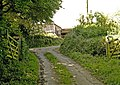 Hustyn Farm lane - geograph.org.uk - 847068.jpg