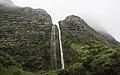 Ilha das Flores P5290305 (35968928486).jpg