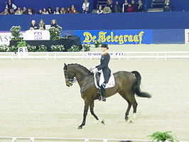 Schellekens op Jumping Amsterdam in de FEI World cup.