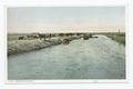 Irrigation Canal (NYPL b12647398-75580).tiff