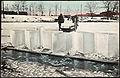 Isskjæring, ca 1910 postkort.jpg