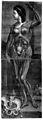 J. F. Gautier d'Agoty, Anatomie des parties... Wellcome L0030027.jpg