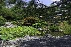 Japanese Garden NBG 2 LR.jpg