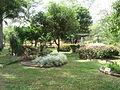 Jardín de la Quinta de San Pedro Alejandrino.jpg