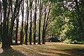 Jardin Botánico Valdivia (141349285).jpeg