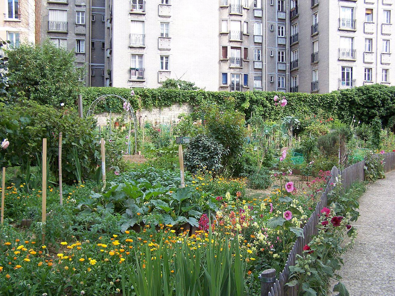 Original file 2 576 1 932 pixels file size mb for Boulevard du jardin botanique 20