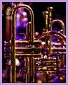 Jazzy Brass (37935713056).jpg