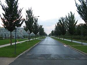 Haute Borne - Haute Borne European scientific park.