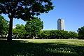 Jinguu-higashi shibafu-hiroba.jpg