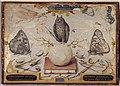 Joris Hoefnagel - Allegory for Abraham Ortelius.jpg