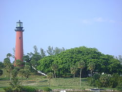 Jupiter Lighthouse and Banyan Tree.JPG