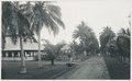 KITLV - 12608 - Kleingrothe, C.J. - Medan - Tobacco plantation at Patoembah in Deli - 1903.tif
