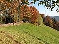 Kandel Platte Simonswald 01.jpg