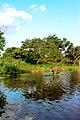Kayaking & boat club.jpg