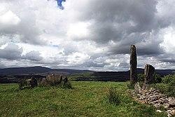 Kealkill Stone Circle (2) - geograph.org.uk - 1392012.jpg