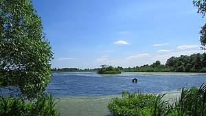 Mytishchinsky District - Lake Kiyovo, a protected area of Russia in Mytishchinsky District