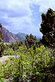 Kolob Canyons02.jpg
