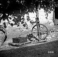 Kolovrat in preša (Polica), Vino 1948.jpg