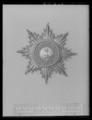 Kraschan för riddare av S-t Georgsorden Hannover, ca 1850 - Livrustkammaren - 53733.tif