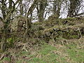 Laigh Smithstone old limekiln.JPG