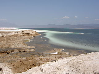 Hypersaline lake Landlocked body of water that contains concentrations of salts greater than the sea