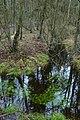 Landschap De Stroopers te Kemzeke - 372164 - onroerenderfgoed.jpg
