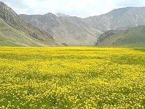 Lar National Park - Lar national park