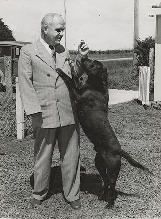 Ministry of Civil Defence & Emergency Management (New Zealand) - Image: Leon Götz, 1949