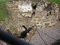 Limekiln Ruin, East Kilbride - geograph.org.uk - 60533.jpg