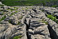 Limestone pavement above Malham Cove (5838).jpg