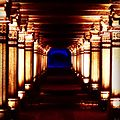 Lit Pathway.jpg