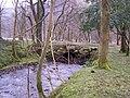 Loch Eck, Benmore-Glenbranter Forestry Road - geograph.org.uk - 159894.jpg