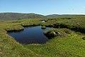 Lochans on the plateau above Grut Fea - geograph.org.uk - 1429817.jpg