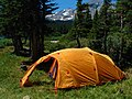Looking West, Campsite In Brainard Lake Campground - panoramio.jpg
