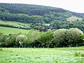 Looking towards Knowle Hill - geograph.org.uk - 177268.jpg