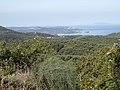 Lutses N.W. view to Othoni island - panoramio.jpg