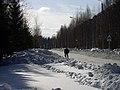 Lyovintsy, Kirovskaya oblast', Russia, 612079 - panoramio (75).jpg