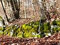Mäuerchen mit Moos - panoramio.jpg