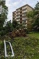 Mülheim an der Ruhr Heißen Sturmschäden Juli 2014 008.jpg