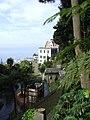 Madeira - Monte - Jardim Tropico (2092626169).jpg