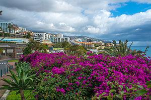 Madeira 5 2014