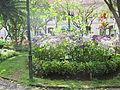Madeira em Abril de 2011 IMG 1718 (5663177181) (2).jpg