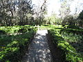 Magnolia Plantation and Gardens - Charleston, South Carolina (8555497659).jpg