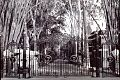Main Gate, The Doon School.jpg