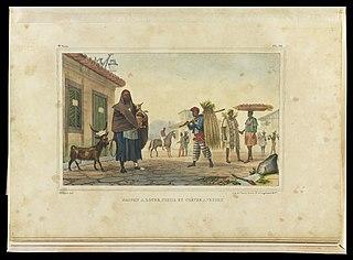 Maison a louer, cheval et chèvre a vendre
