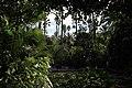 Majorelle Gardens (11080535875).jpg